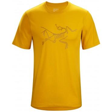 Shirts & Tops (18)